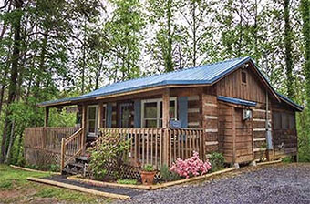 fly away 1 bedroom pet friendly cabin in Pigeon Forge